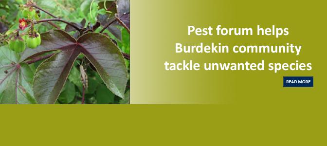 Pest Advisory Forum