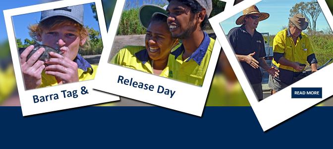 Barramundi Tag and Release Day