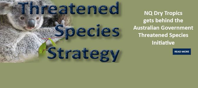 Threatened Species Strategy