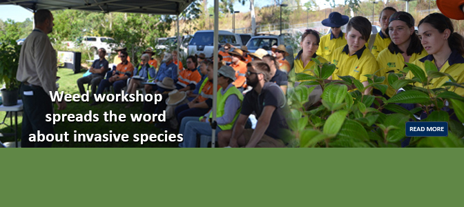 Weed Identification Workshop