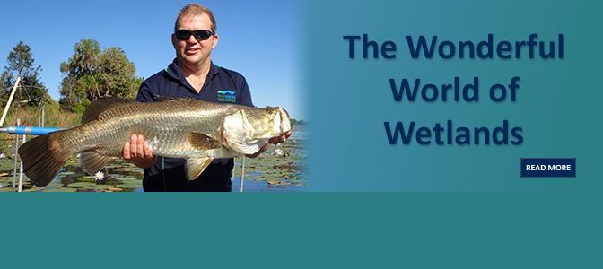 Wonderful World of Wetlands