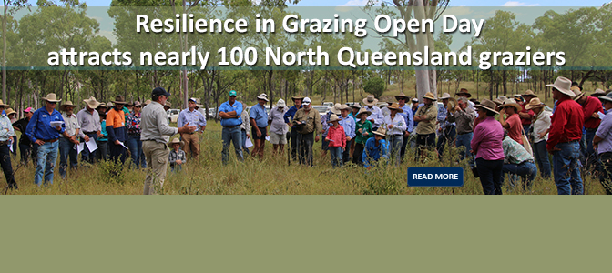 Resilience in Grazing Open Day