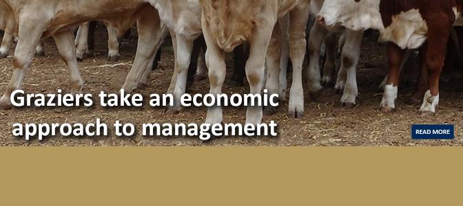 Economic_approach_to_managementJune2016_672x300