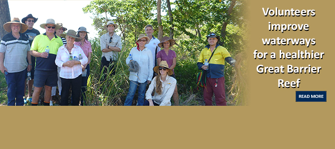 Volunteers improve waterways