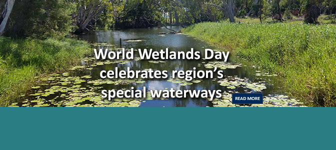 World Wetlands Day 2017