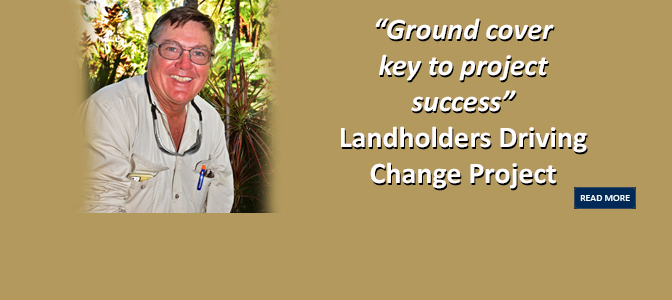 Ground cover key to project success