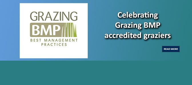 Celebrating Grazing BMP accredited graziers