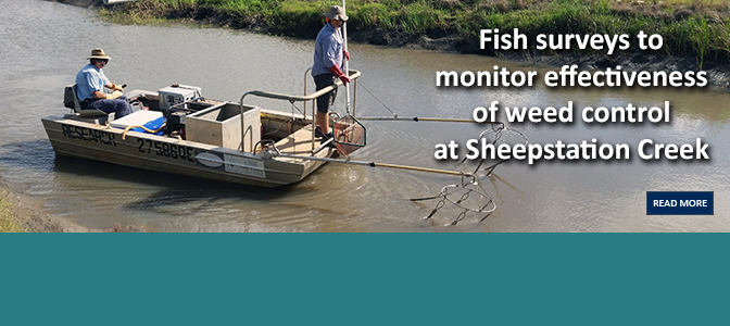 Fish surveys to monitor effectiveness of weed control