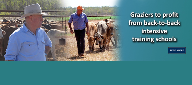 Graziers to profit from back-to-back intensive training schools