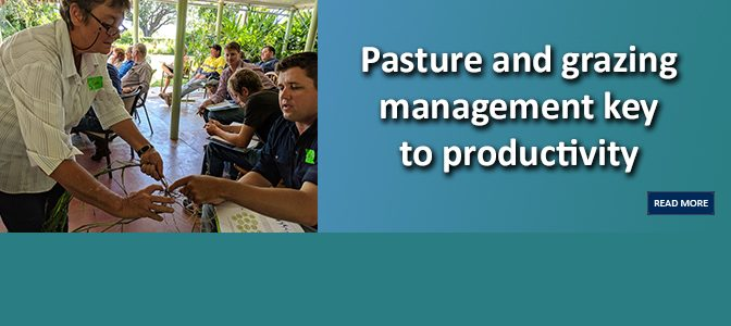 Pasture and grazing management key to productivity