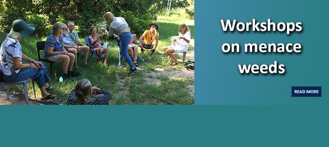 Workshops on menace weeds