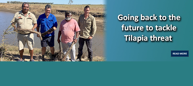 Going back to the future to tackle Tilapia threat