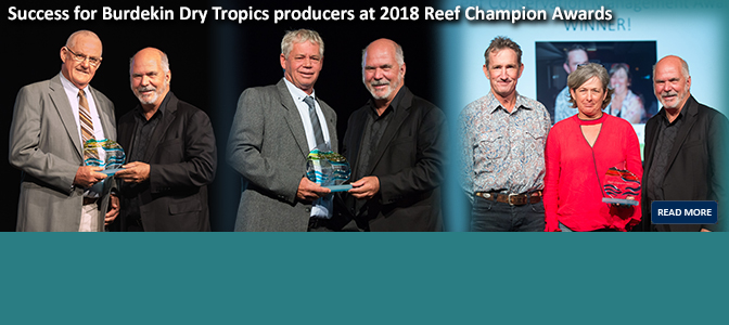 2018 Reef Champion Awards
