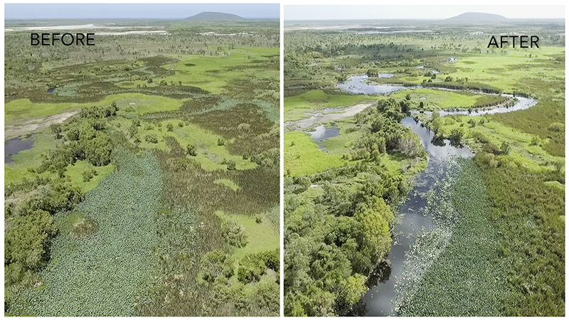 Saltwater Creek, Lower Burdekin, before & after
