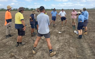 Workshop to address soil health in sugar cane crops