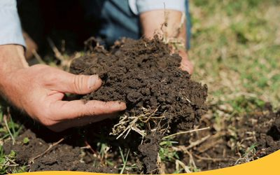 Toolbox to assess soil health