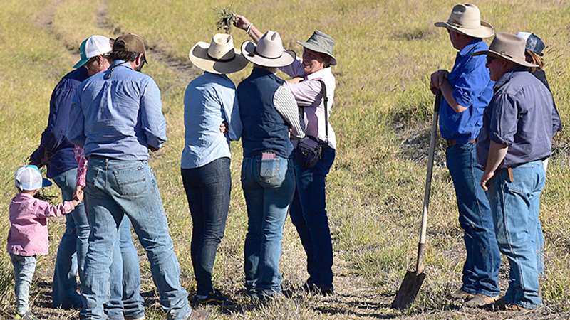 Changing the landscape with soil health
