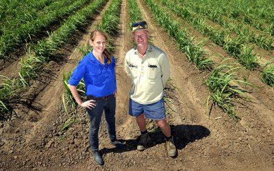 Burdekin growers reduce nitrogen use and maintain yield