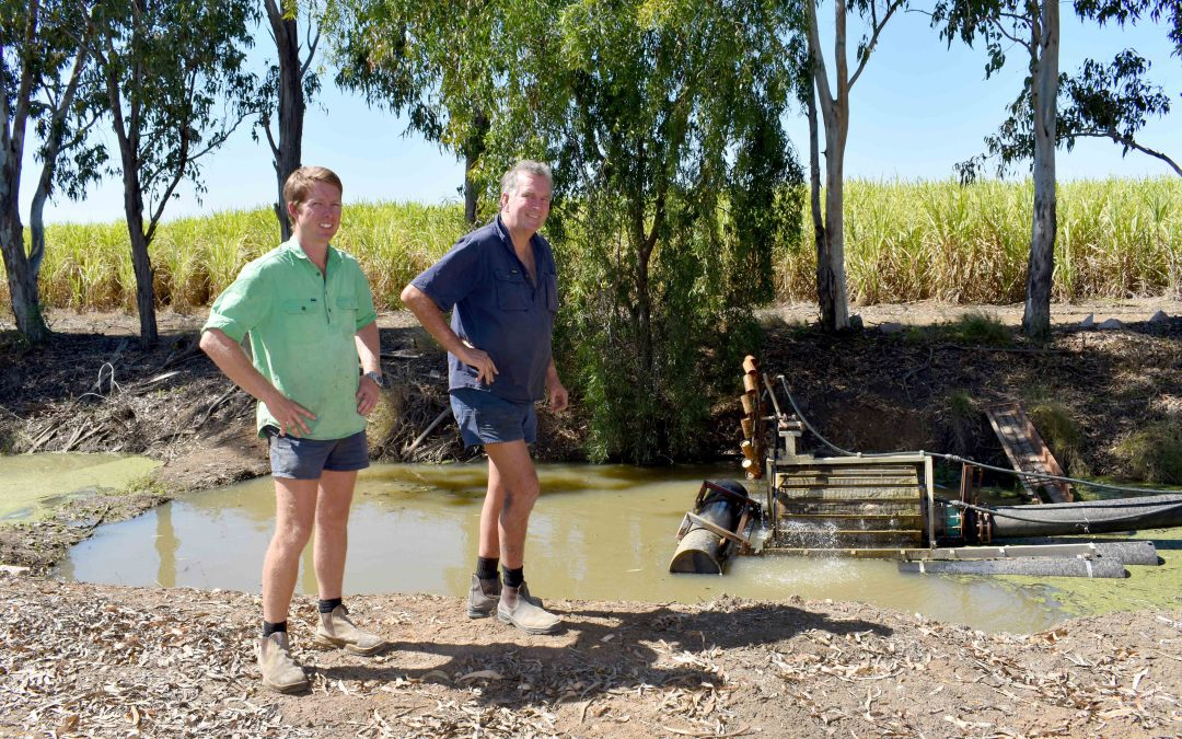 Automated irrigation saves time and money for Burdekin growers
